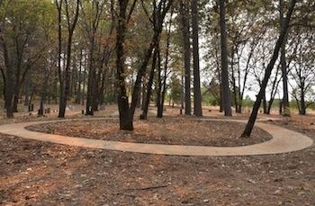 circular path - 1