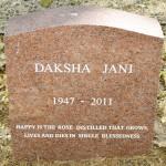 Daksha Jani - 800