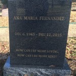 Ana Maria Fernandez - 800
